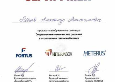 Сертификат Рябцеву Александру Анатольевичу проектирование производство и монтаж